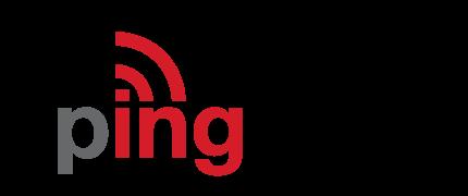 ping20s_logo